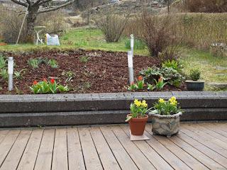 Working in the garden / Hagearbeide